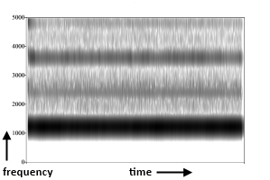 Spectrogram of the sound of a descant recorder