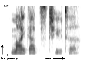 Spectrogram of the phrase 'My dad's tutor'