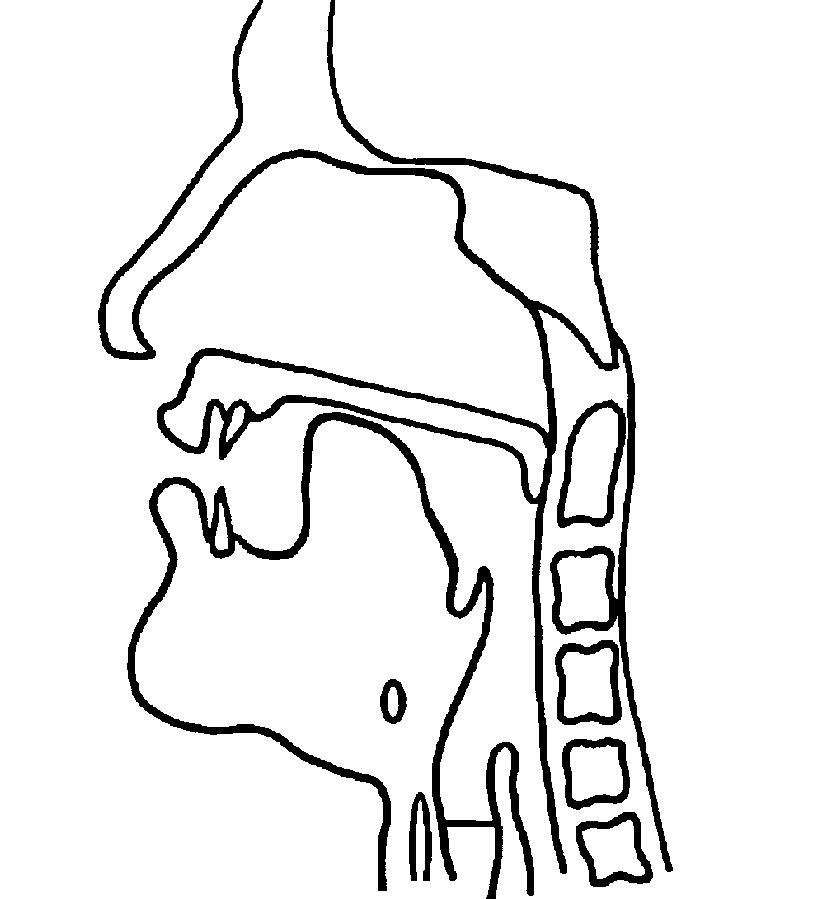 Alveolar approximant