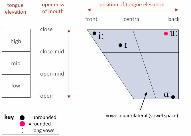 Four vowels on vowel quadrilateral