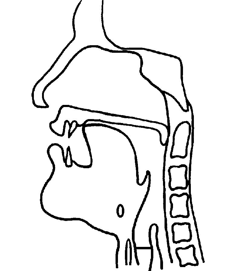 Post-alveolar affricates