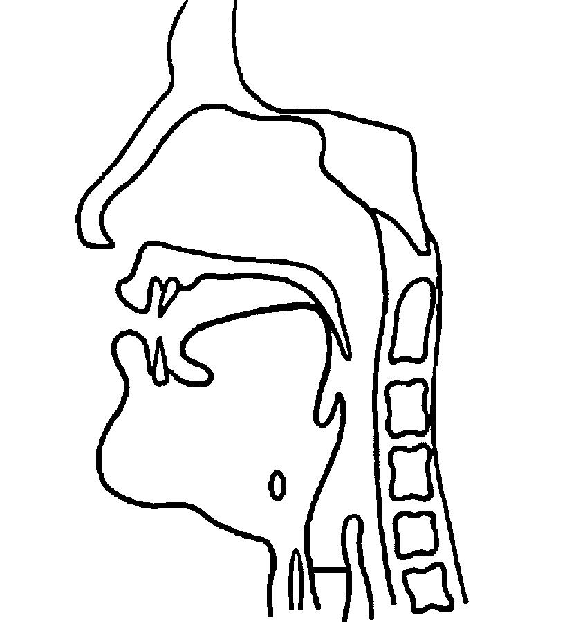 Velar nasal