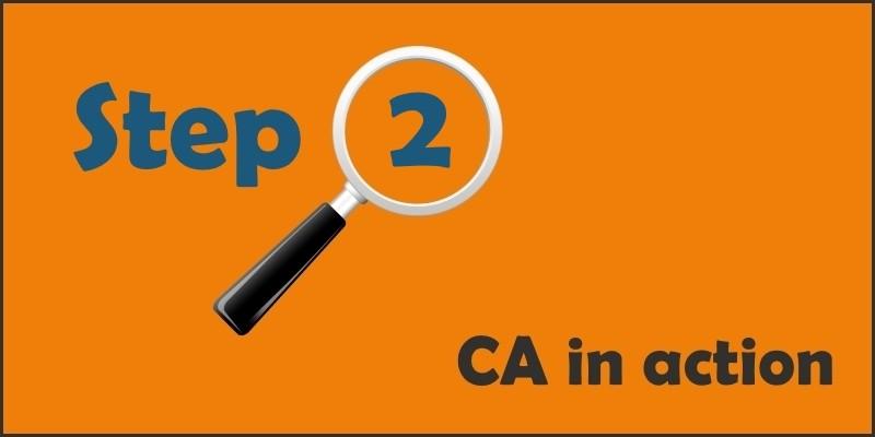 ca101 step 2 Determine Structure