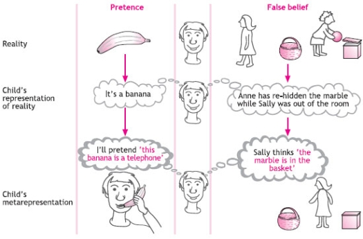 Pretending and false beliefs as metarepresentation