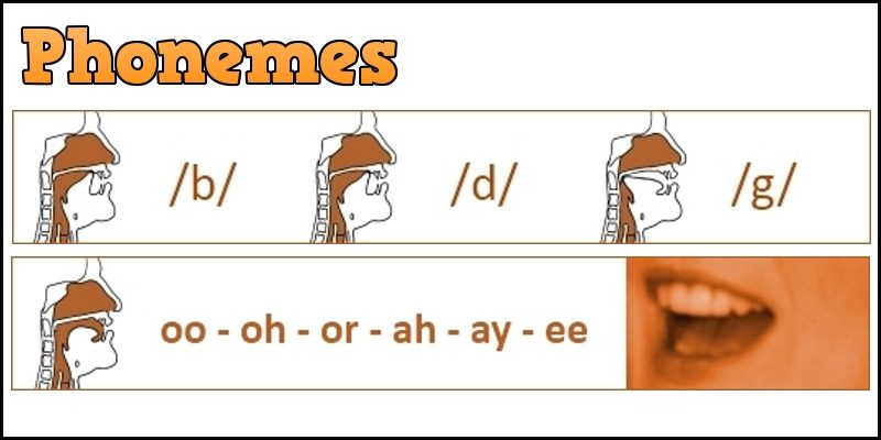 phonemes header