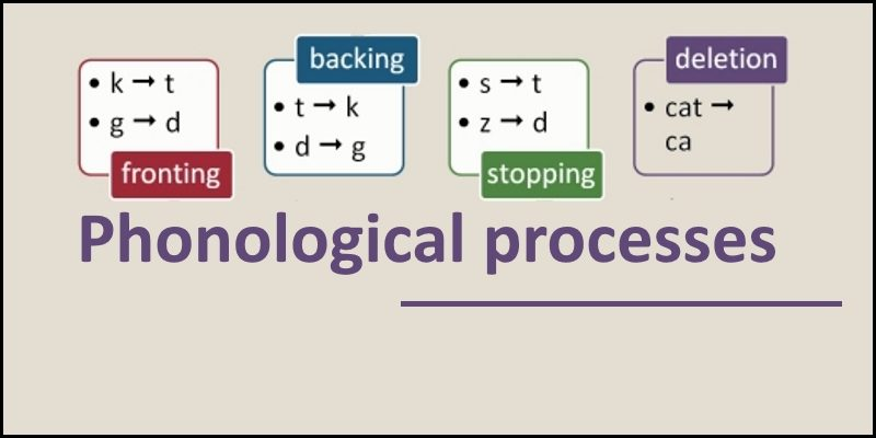 phonological processes header