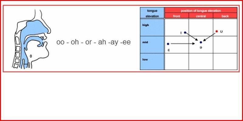 vowels header