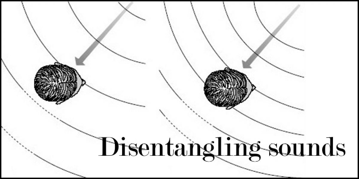 Disentangling Sounds