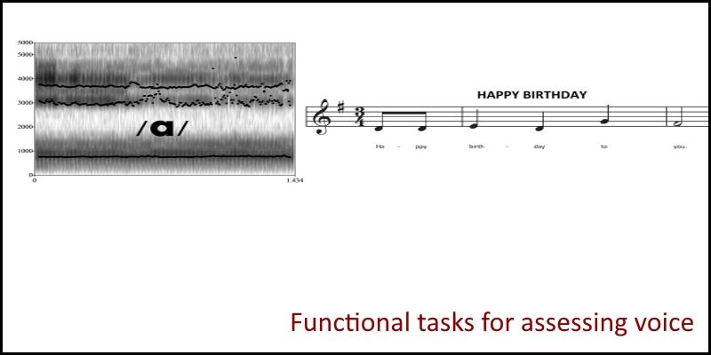 functional tasks for assessing voice header