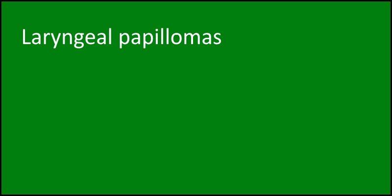 laryngeal papillomas masthead