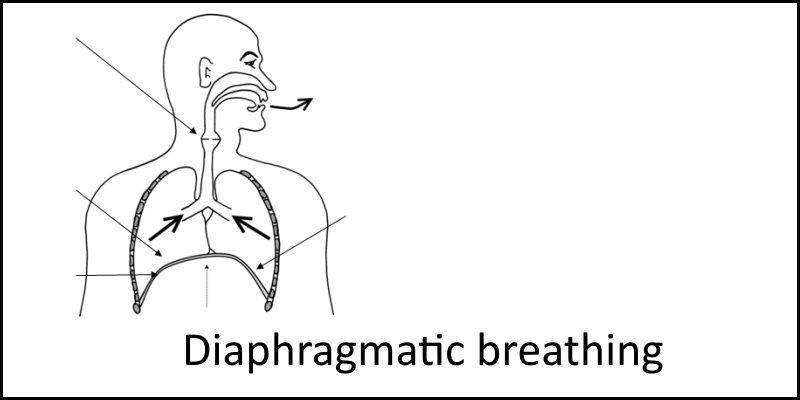 diaphragmatic breathing header