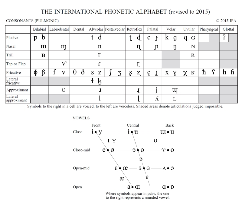 IPA pulmonic consonants and vowels 2015