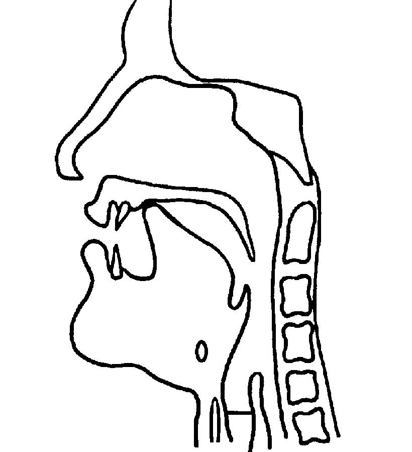Alveolar nasal