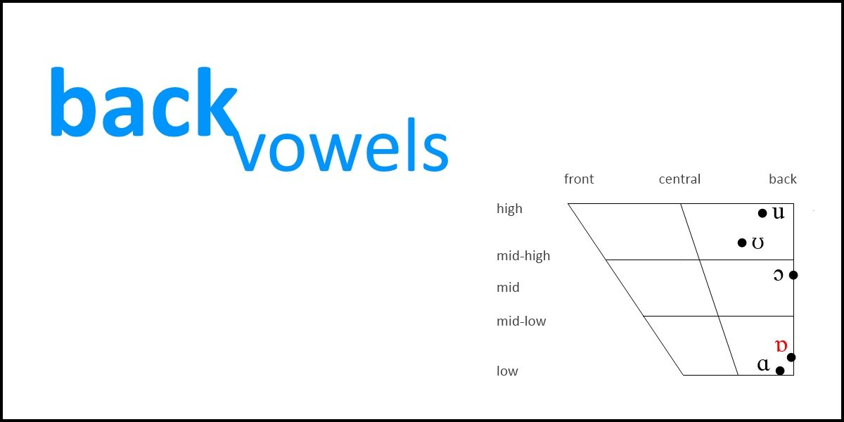 Back Vowels Slt Info