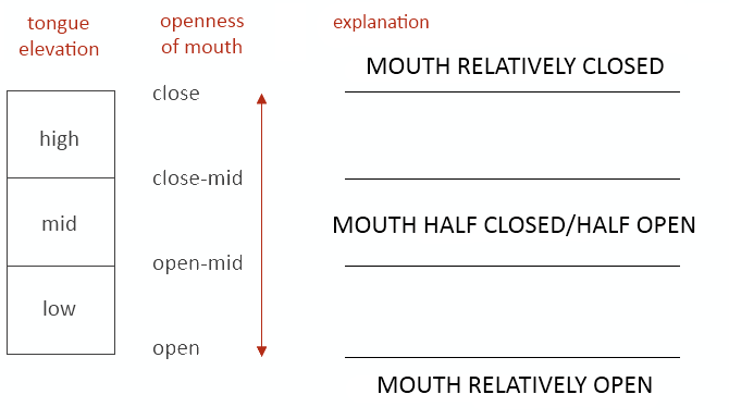 Correlation between tongue elevation and mouth openness