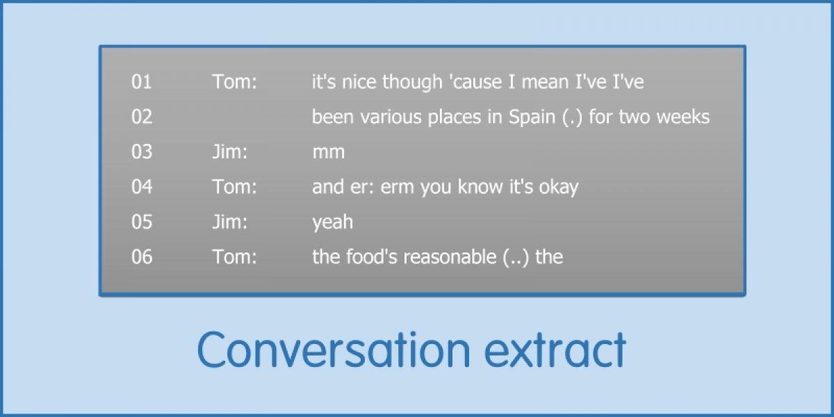 Appendix 2: Conversation Extract