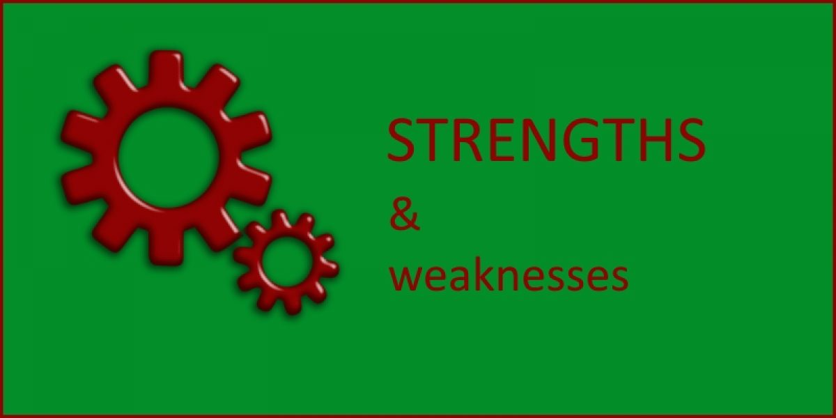 Strengths and Weaknesses of Research Styles