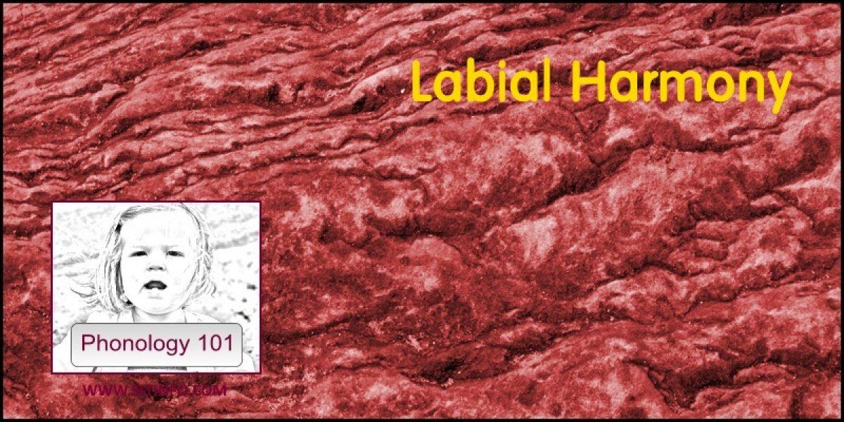 Labial Harmony