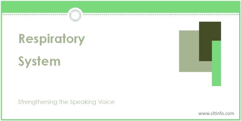 ssv respiratory system