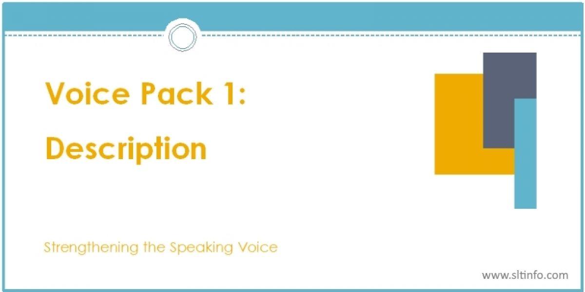 VOICE PACK 1: DESCRIPTION